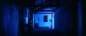 - film - 1641_20