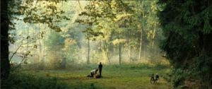 - film - 34223_10