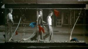 - film - 7742_1