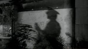 - film - 7742_6